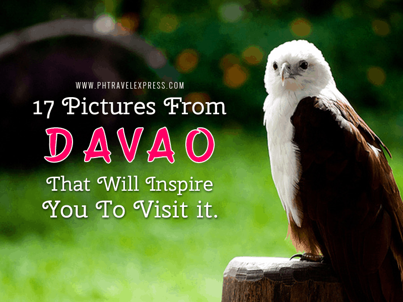 Davao tourist destination and its attraction